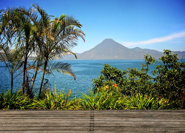 Atitlan, Guatemala, Logo, Water, Palms, Wood, View