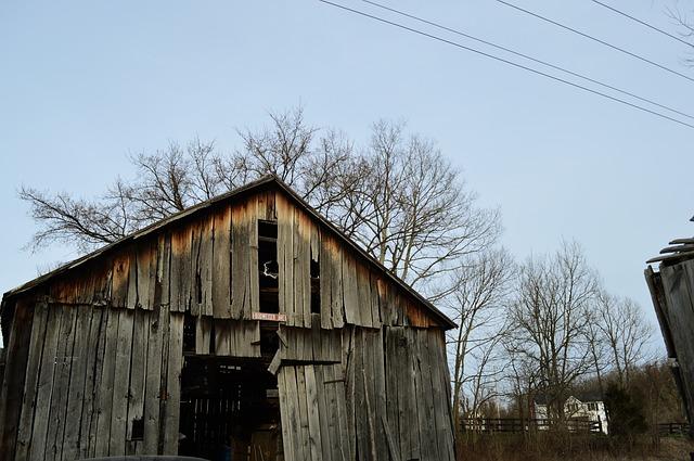 Barn, Kentucky, Budweiser Ave, Wood, Farm