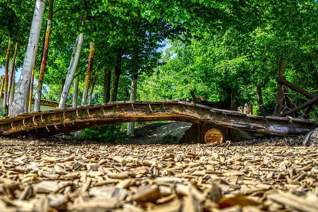 Bridge, Wood, Wooden Bridge, Transition, Wood Chips