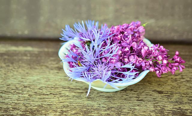 Flowers, Flower Bowl, Wood, Tender, Decoration