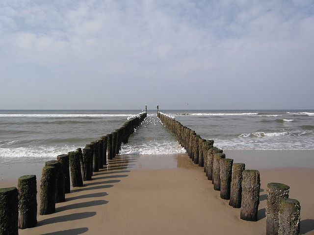 Domburg, Sea, Zeeland, Post, Wood, Netherlands, Seagull