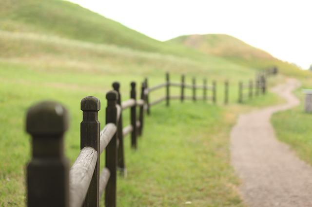 Landscape, Field, Fence, Wood, Green, Nature, Fields