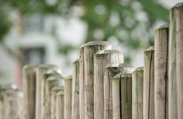 Fence, Wood Fence, Wood, Limit, Demarcation, Boards