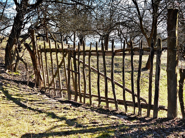 Gateway, The Fence, Wood, Fencing, Rails, Spring
