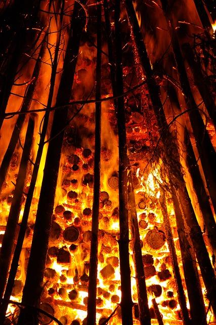 Embers, Glow, Wood, Burn, Holzstapel, Glow Oven