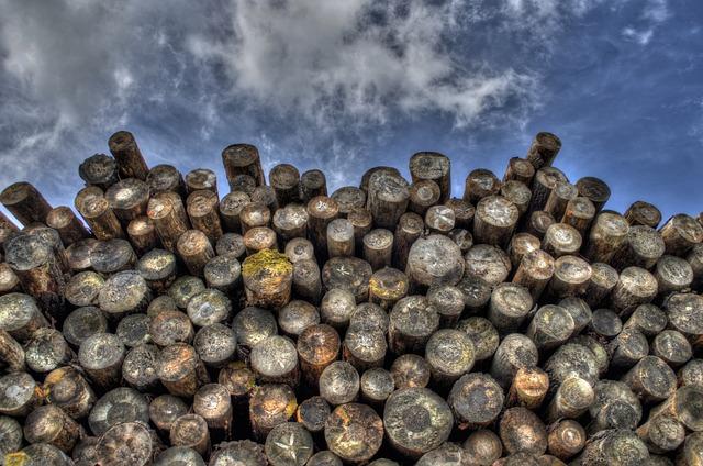 Logs, Wood, Timber, Lumber, Woodpile, Forestry, Logging