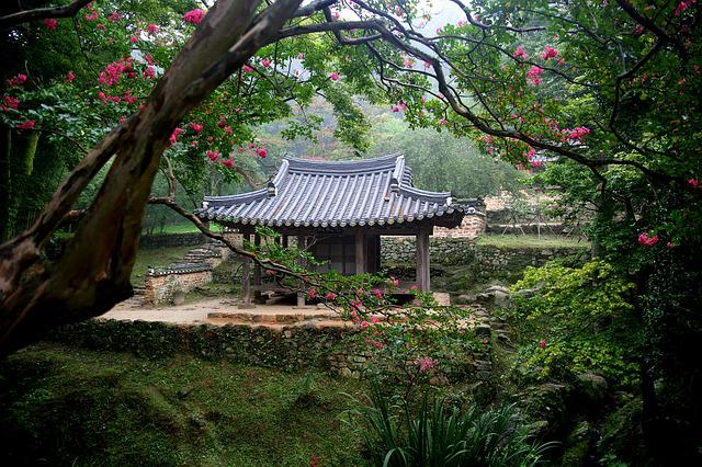 Wood, Nature, Garden, Park, Damyang