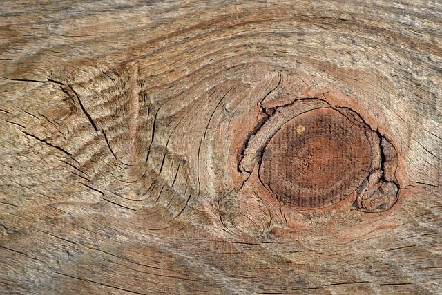 Cracks, Wood, Node, Texture
