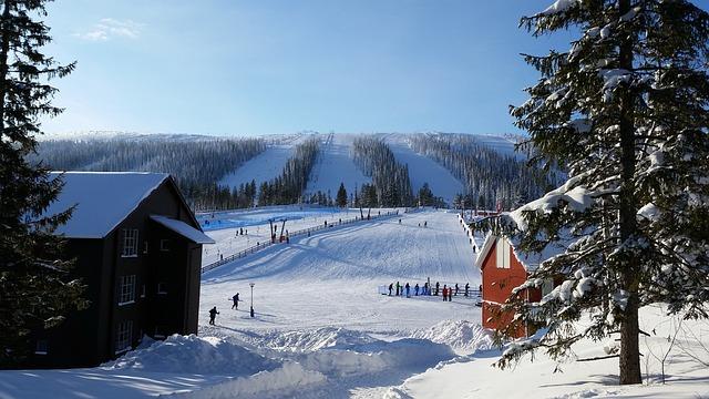 Snow, Winter, Cold, Wood, Mountain, Ice, Frozen, Ski