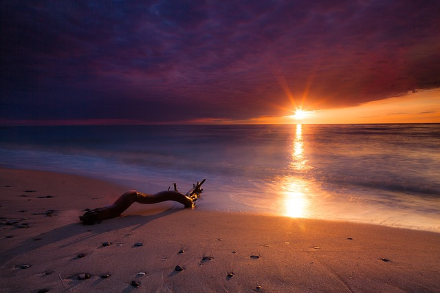 Sea, Sunset, Sun, Clouds, Beach, Wood, Reflexion