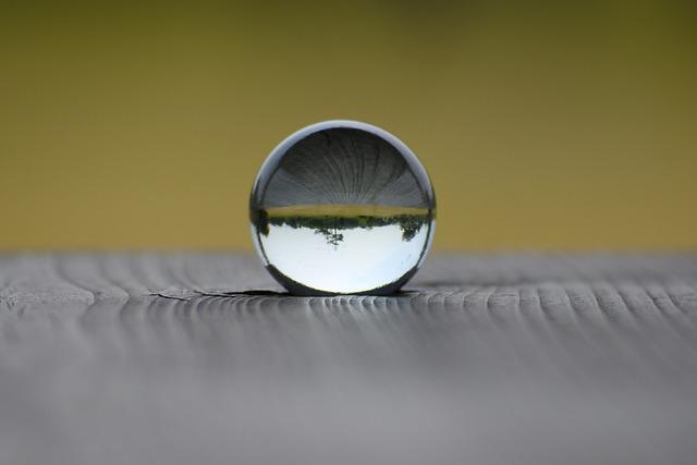 Natural, Landscape, Park, Wood, Table, Glass