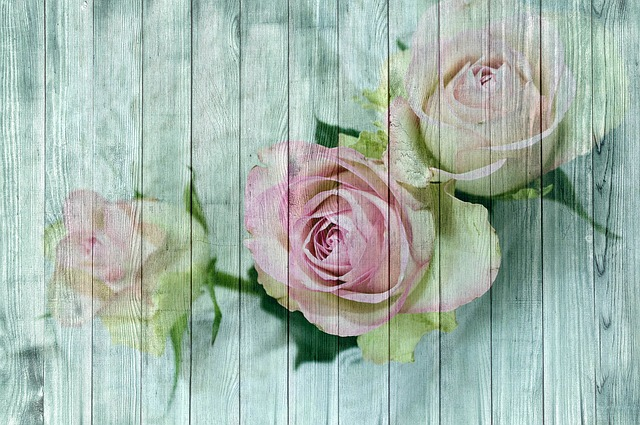 Vintage, Wood, Rose, Shabby Chic, Poster, Paneling
