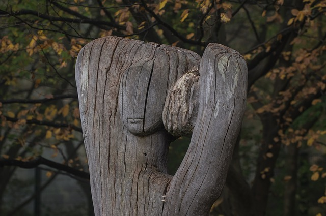 Wood, Figure, Wood Plastic, Old, Weathered, Woods