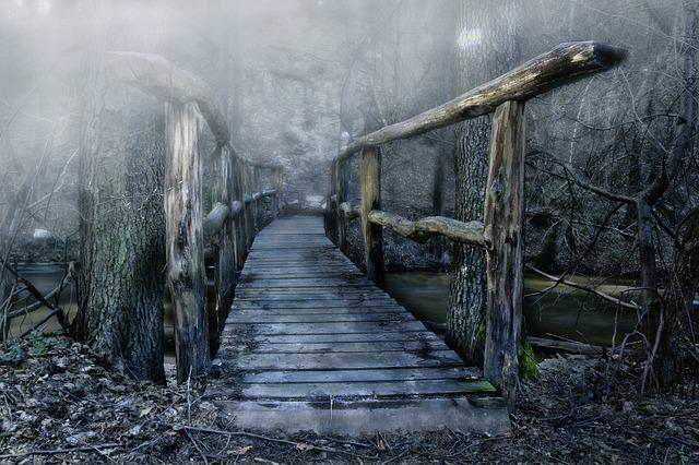 Bridge, Wooden Bridge, Color, The Fog