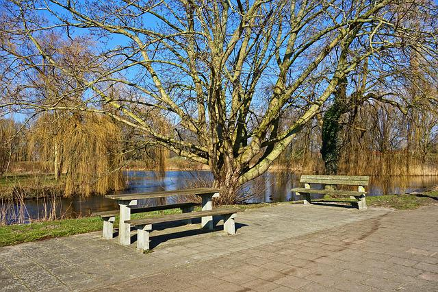 Resting Place, Picnic Spot, Wooden Table, Wooden Bench
