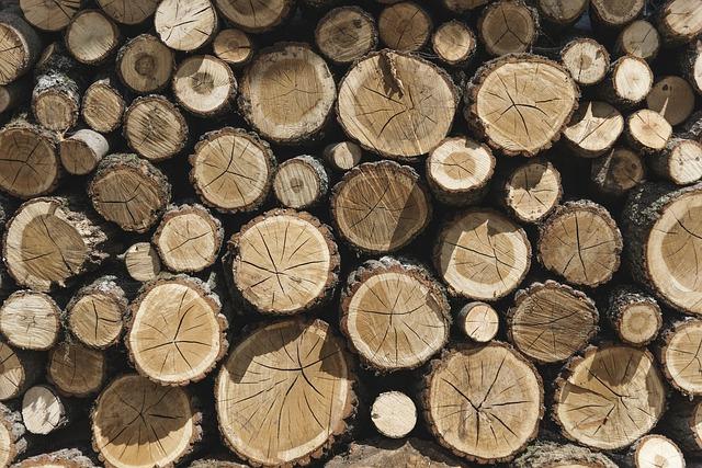 Desktop, Firewood, Tree Log, Woodpile, Wooden