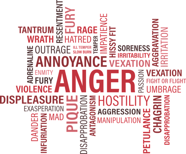 Anger, Word Cloud, Annoy, Tantrum, Fury, Emotion