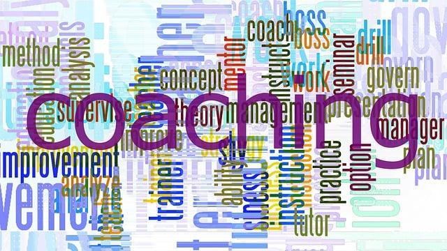 Coach, Tutor, Business, Mentor, Work, Concept, Teacher