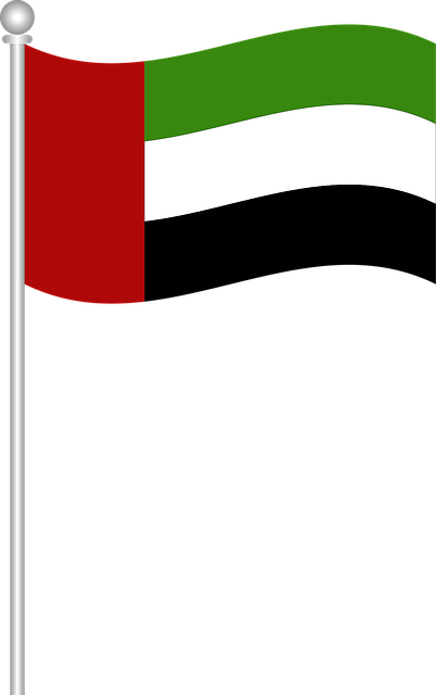 Flag Of Uae, Flag, Uae, World Flags