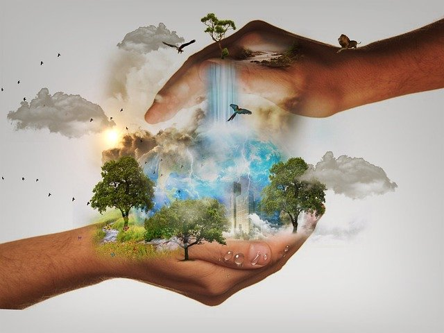 Nature Conservation, Responsibility, World, Hands