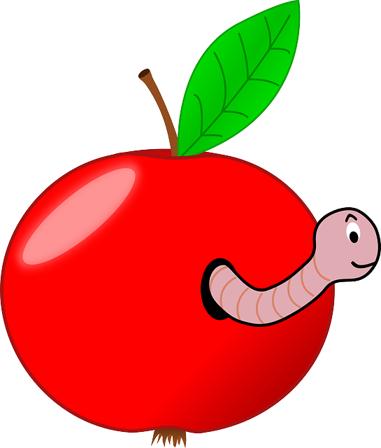 Wormhole, Apple, Fruit, Red, Worm, Worm-eaten