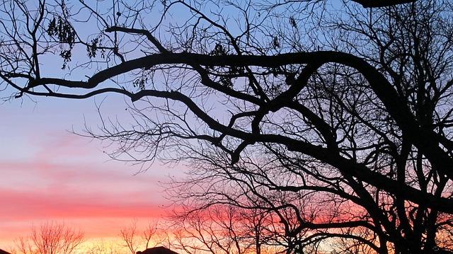 Western Sunset, Ft, Worth, Texas
