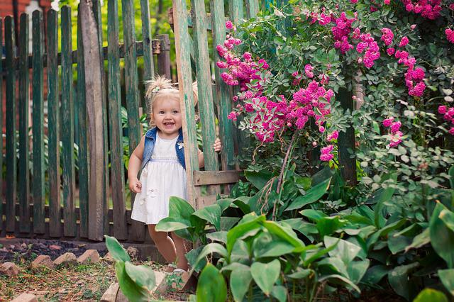 Village, Outdoors, Garden, Nature, Plant, Baby, Yard