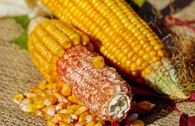 Corn, Corn On The Cob, Corn Kernels, Yellow, Vegetables
