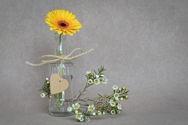 Gerbera, Flower, Blossom, Bloom, Yellow, Yellow Flower