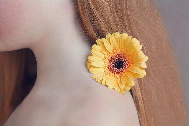 Flower, Gerbera, Yellow, Yellow Flower, Schnittblume
