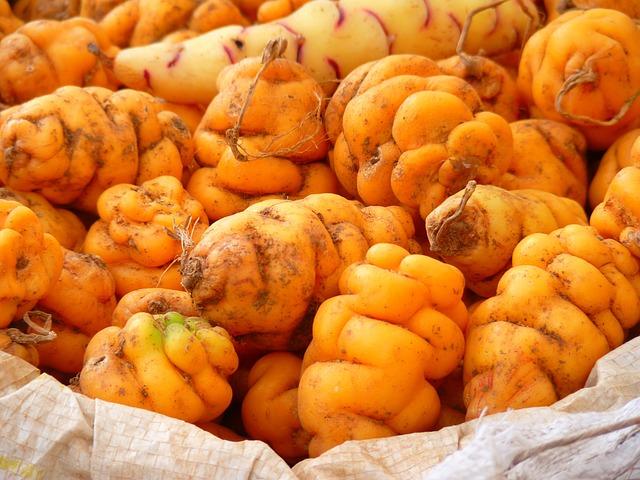 Potato, Potatoes, Peru, Food, Yellow, Orange, Thong