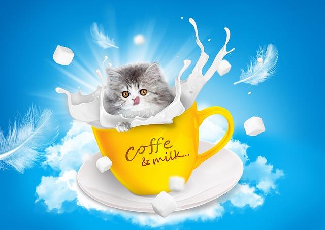 Cat, Milk, Teacup, Persian, Yellow, White, Pet, Friend