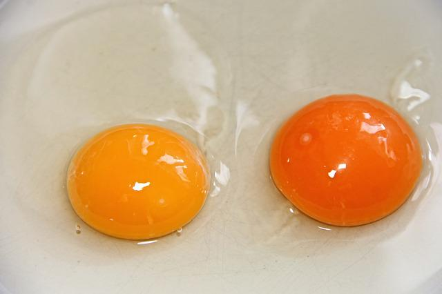 Egg Yolk, Egg, Fried Eggs, Raw, Yellow, Orange, Protein