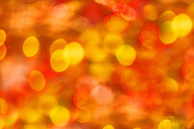 Color, Red, Yellow, Macro, Close-up, Color Image