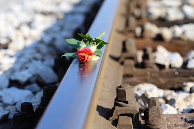 Stop Youth Suicide, Yellow Red Rose On Railway