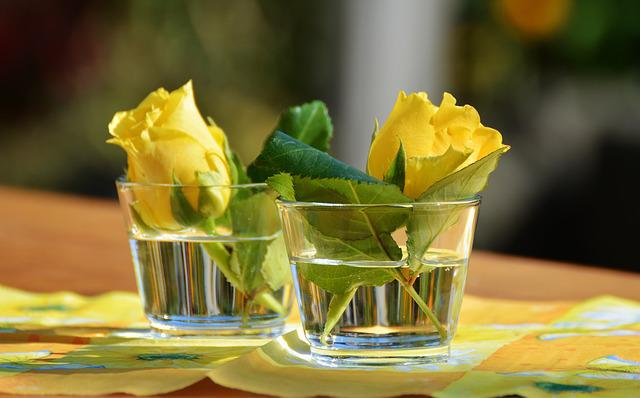 Glass, Vase, Yellow Roses, Decoration, Celebration, Out
