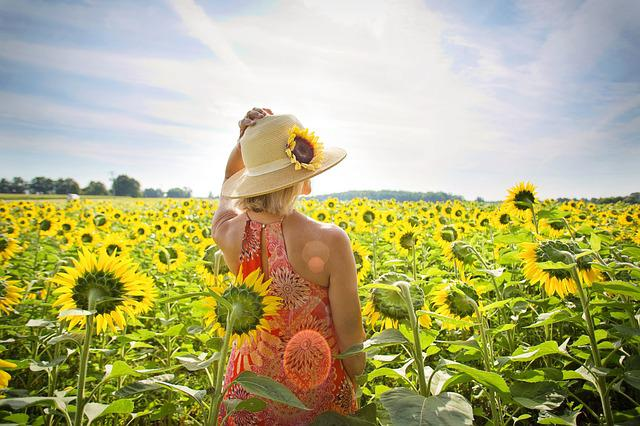 Sunflowers, Field, Woman, Yellow, Summer, Blossoms