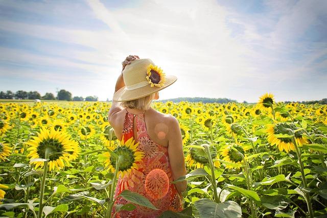Sunflowers, Field, Woman, Yellow, Summer, Blossoms
