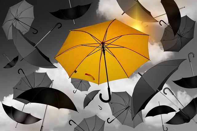 Umbrella, Yellow, Black, White, Selection, Especially