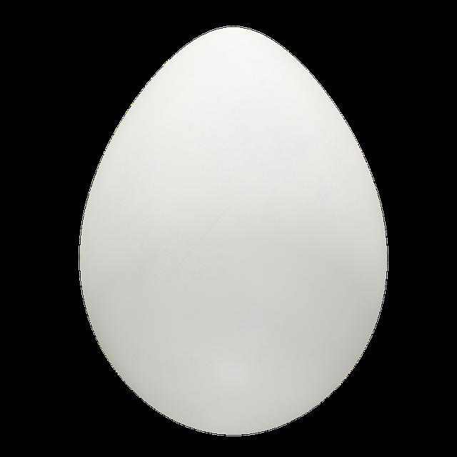 Egg, Chicken, Yellow, Yolk, Protein, Meal, Nutrition