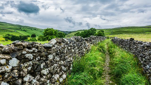 Malham Cove, Yorkshire Dales, Dry Stone Wall, Nature