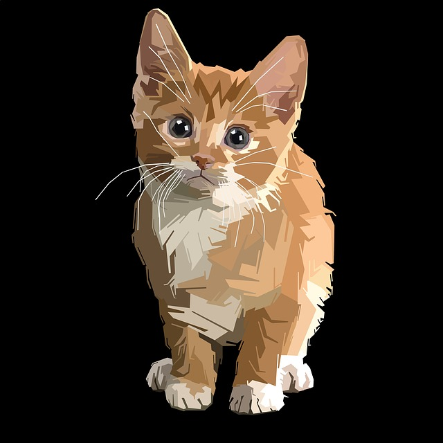 Cute, Pet, Little, Cat, Animal, Funny, Kitten, Young