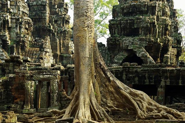 Cambodia, Angkor, Temple, Your Prey, Ruins