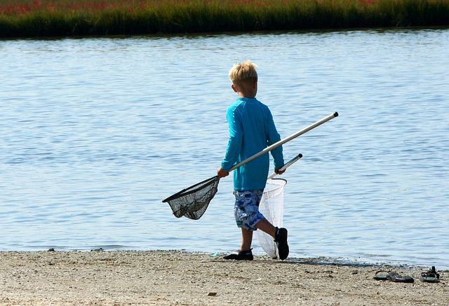 Fishing Nets, Crabbing, Youth, Boy, Water, Sea, Crab