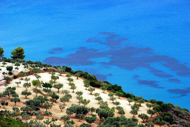 Beach, Sea, Tree, Holidays, Summer, Island, Zakynthos