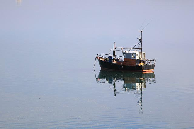 Boat, Reflection, New, Zealand, Pukenui, Ocean, Harbour