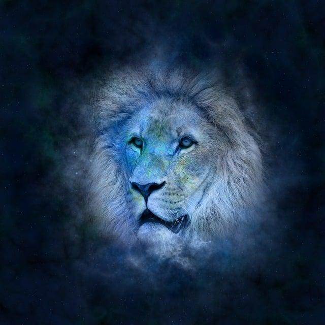 Horoscope, Astrology, Zodiac, Lion, Icon Images