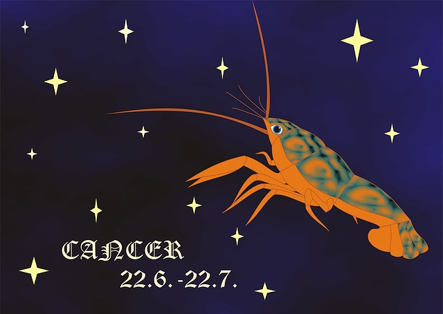 Horoscope, Sign, Crayfish, Sign Of The Zodiac, Zodiac