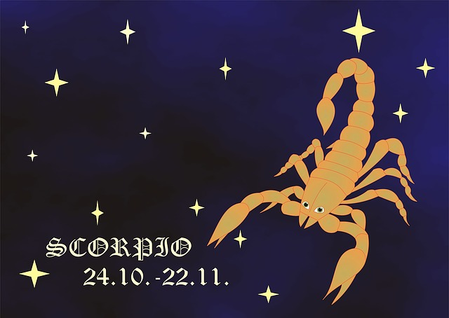 Horoscope, Sign, Zodiac, Sign Of The Zodiac, Scorpio